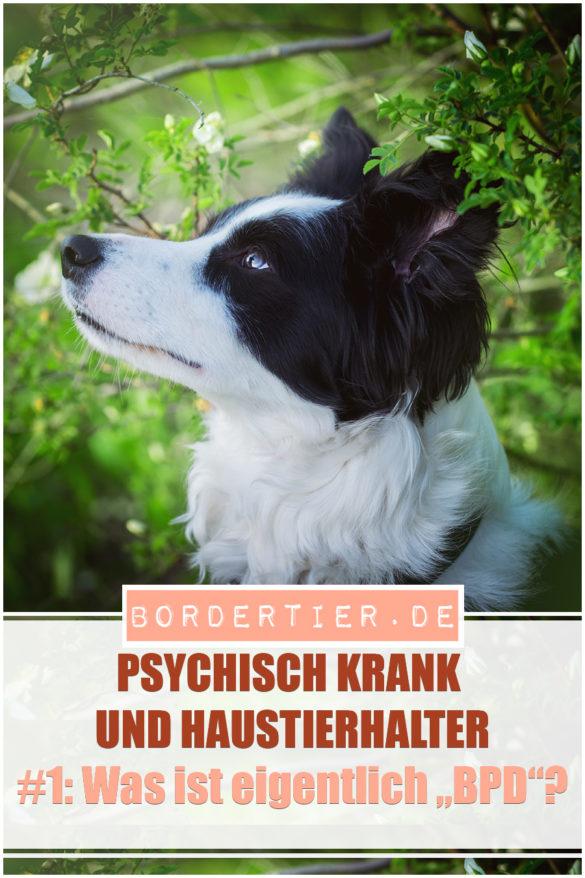 Psychisch Krank und Haustierhalter #1: Was ist eigentlich BPD?
