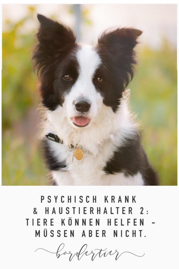 Psychisch krank und Haustierhalter #2: Tiere können helfen, müssen aber nicht